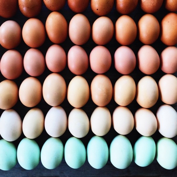 colorful-food-arrangement-photography-foodgradients-brittany-wright-3-605x605 egg gradients